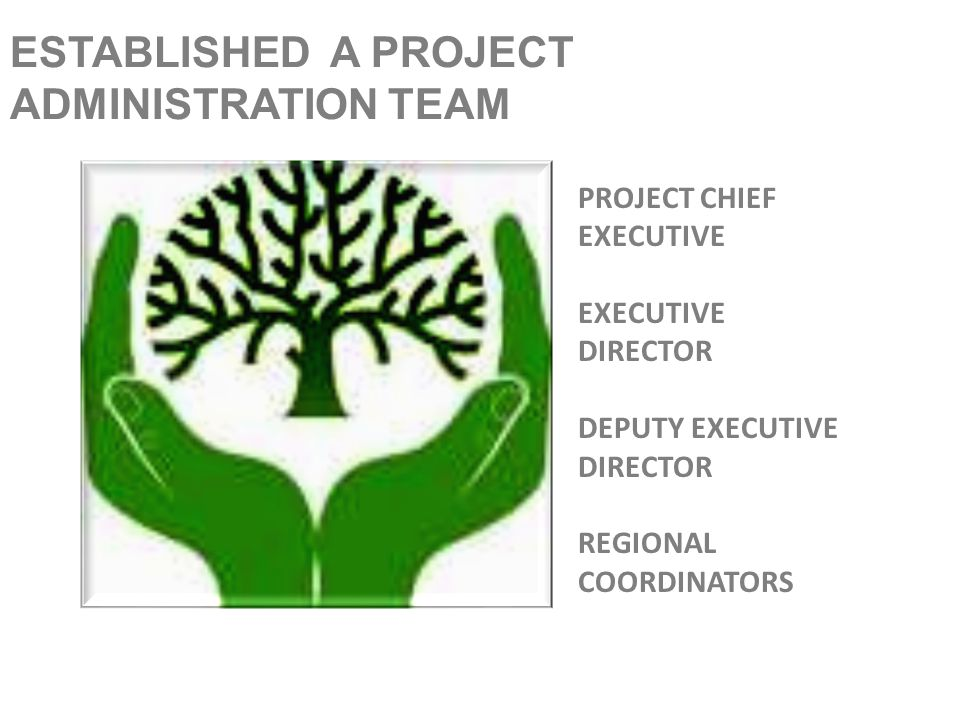 ESTABLISHED A PROJECT ADMINISTRATION TEAM PROJECT CHIEF EXECUTIVE EXECUTIVE DIRECTOR DEPUTY EXECUTIVE DIRECTOR REGIONAL COORDINATORS