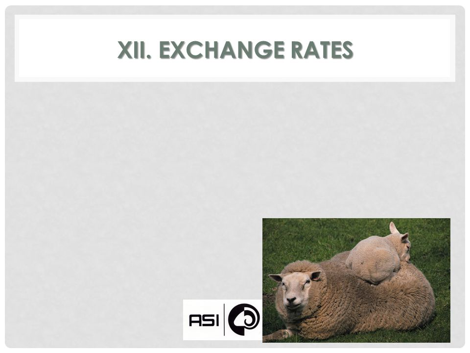 XII. EXCHANGE RATES
