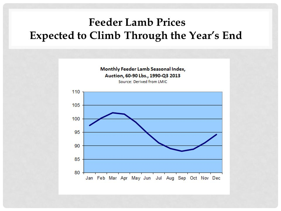 Feeder Lamb Prices Expected to Climb Through the Year's End