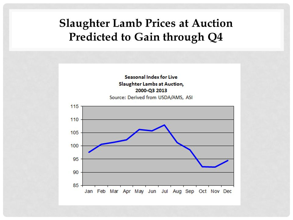 Slaughter Lamb Prices at Auction Predicted to Gain through Q4