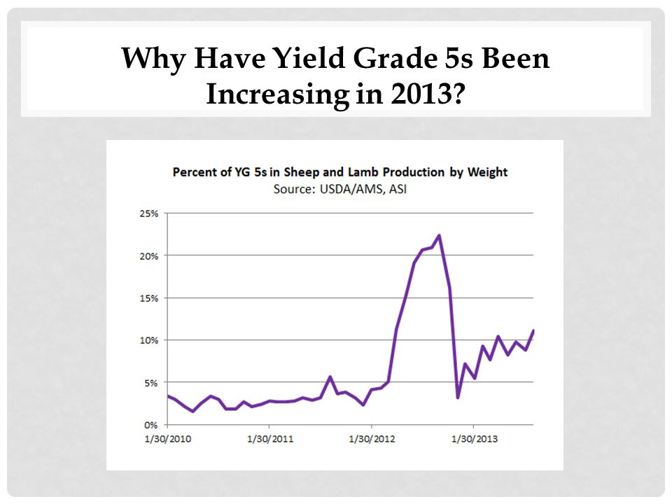 Why Have Yield Grade 5s Been Increasing in 2013