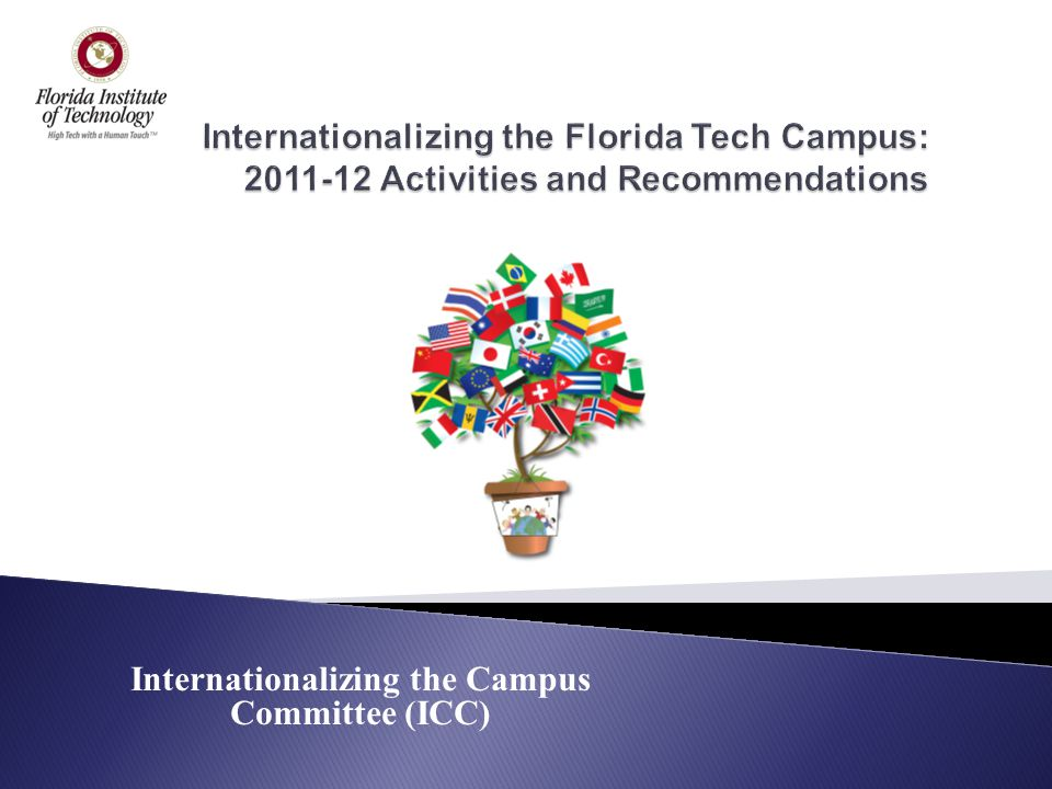 Internationalizing the Campus Committee (ICC)