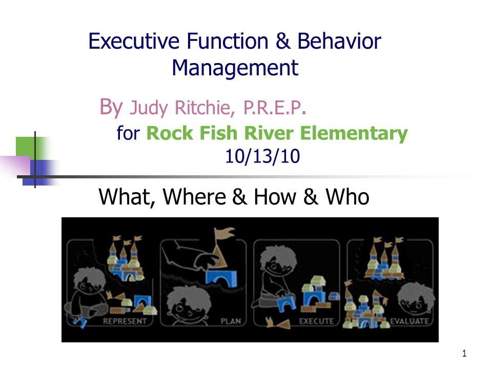 12 Function of Executive Functioning Executive Functioning is the brain s ability to absorb information interpret information, and make decisions based upon this information.