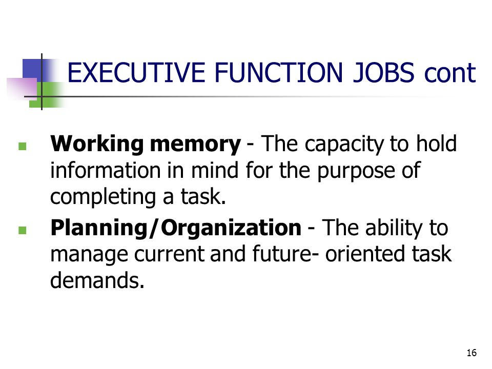 16 EXECUTIVE FUNCTION JOBS cont Working memory - The capacity to hold information in mind for the purpose of completing a task.