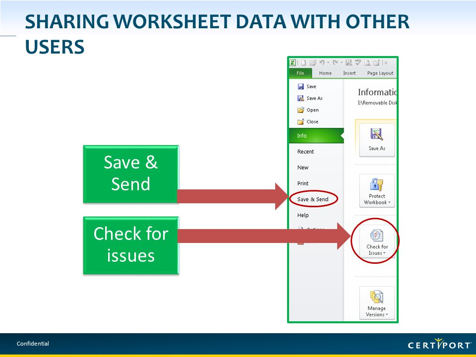 Confidential SHARING WORKSHEET DATA WITH OTHER USERS Save & Send Check for issues