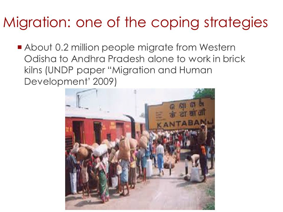 Migration: one of the coping strategies  About 0.2 million people migrate from Western Odisha to Andhra Pradesh alone to work in brick kilns (UNDP paper Migration and Human Development' 2009)