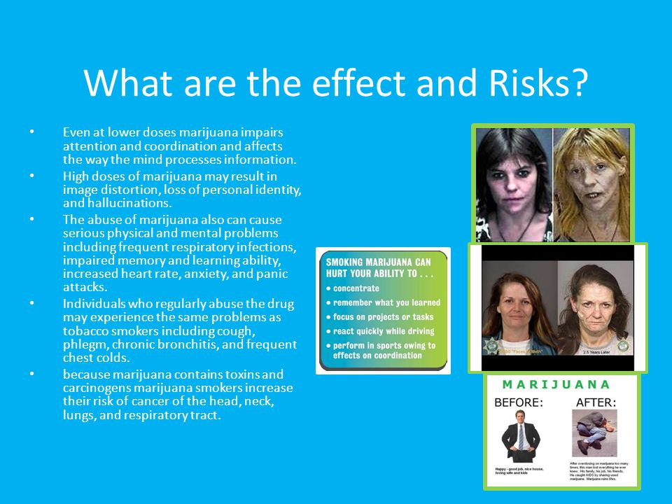 What are the effect and Risks? Even at lower doses marijuana impairs attention and coordination and affects the way the mind processes information. Hi