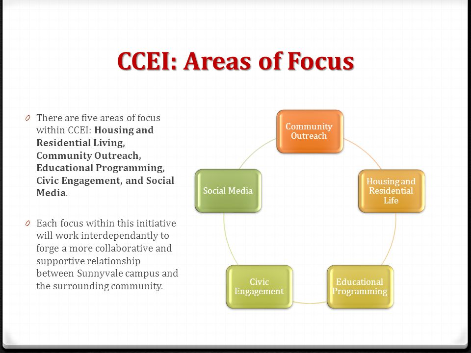 CCEI: Areas of Focus 0 There are five areas of focus within CCEI: Housing and Residential Living, Community Outreach, Educational Programming, Civic Engagement, and Social Media.