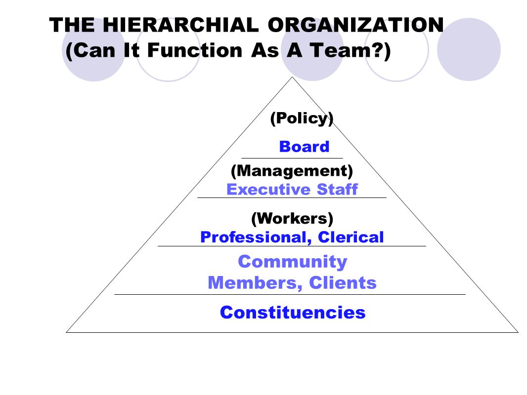 THE HIERARCHIAL ORGANIZATION (Can It Function As A Team?) Constituencies Community Members, Clients (Workers) Professional, Clerical (Management) Exec