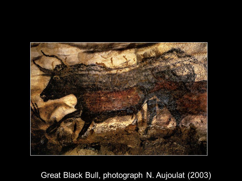 Great Black Bull, photograph N. Aujoulat (2003)