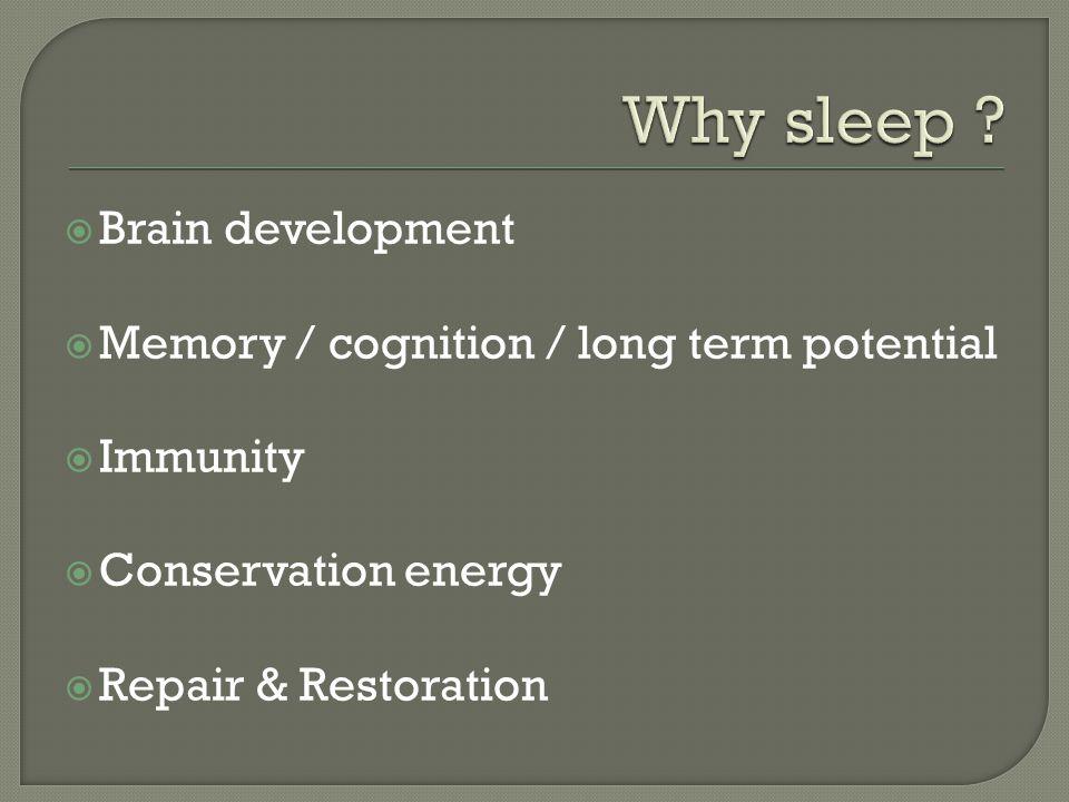  Brain development  Memory / cognition / long term potential  Immunity  Conservation energy  Repair & Restoration