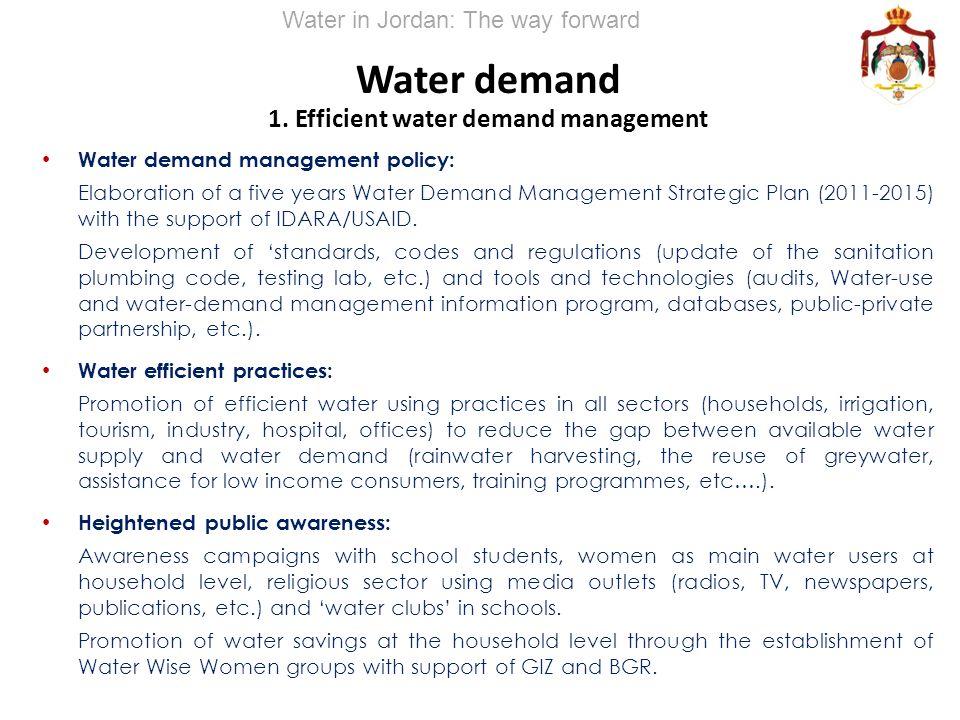 Water demand 1. Efficient water demand management Water demand management policy: Elaboration of a five years Water Demand Management Strategic Plan (