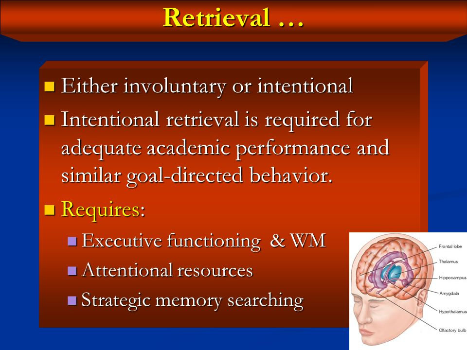 Retrieval The process of recalling stored information through reactivating the pattern or pathways in which the information was originally stored.