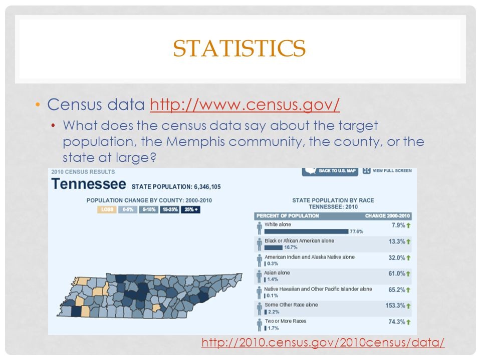 STATISTICS Census data http://www.census.gov/http://www.census.gov/ What does the census data say about the target population, the Memphis community, the county, or the state at large.