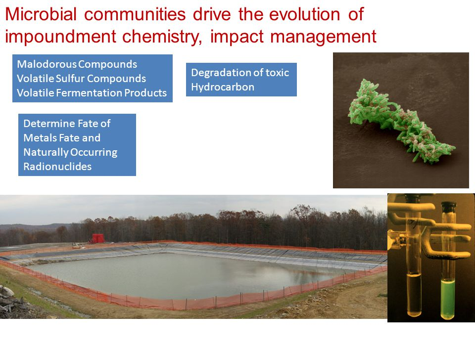 Microbial communities drive the evolution of impoundment chemistry, impact management Malodorous Compounds Volatile Sulfur Compounds Volatile Fermentation Products Degradation of toxic Hydrocarbon Determine Fate of Metals Fate and Naturally Occurring Radionuclides