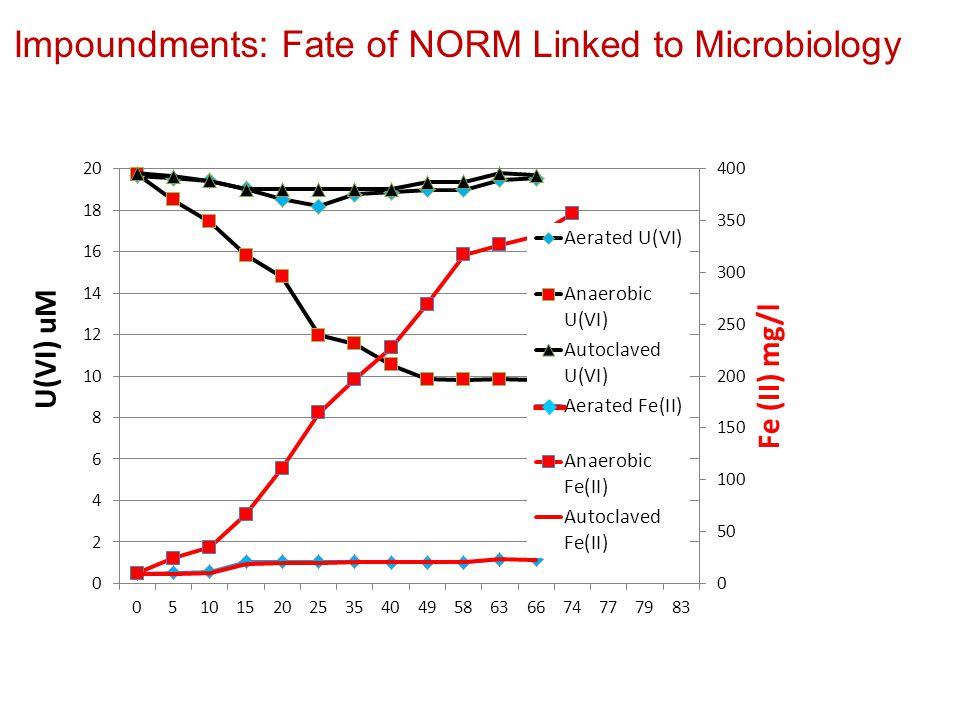 Impoundments: Fate of NORM Linked to Microbiology