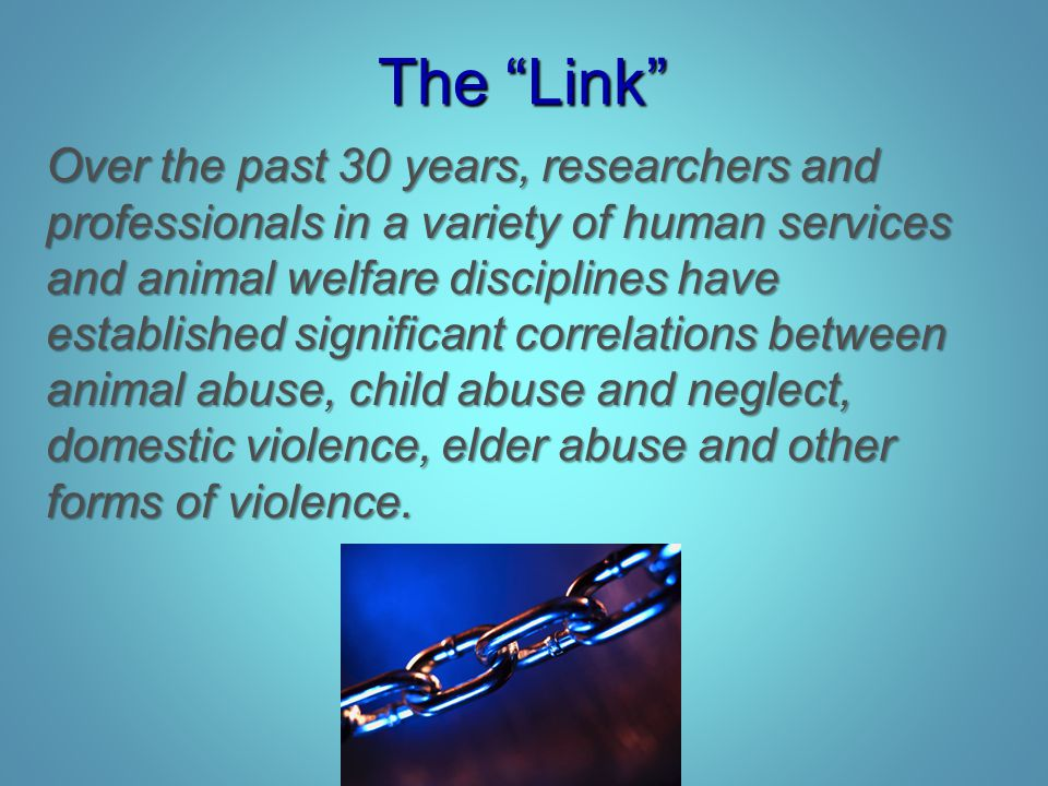 "The ""Link"" Over the past 30 years, researchers and professionals in a variety of human services and animal welfare disciplines have established signif"