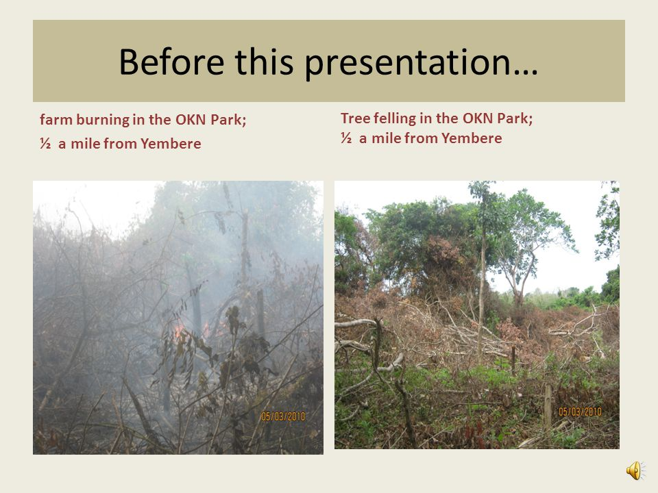 Before this presentation… farm burning in the OKN Park; ½ a mile from Yembere Tree felling in the OKN Park; ½ a mile from Yembere