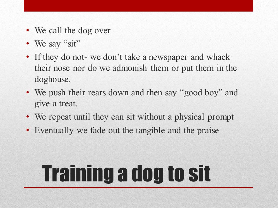 Training a dog to sit We call the dog over We say sit If they do not- we don't take a newspaper and whack their nose nor do we admonish them or put them in the doghouse.