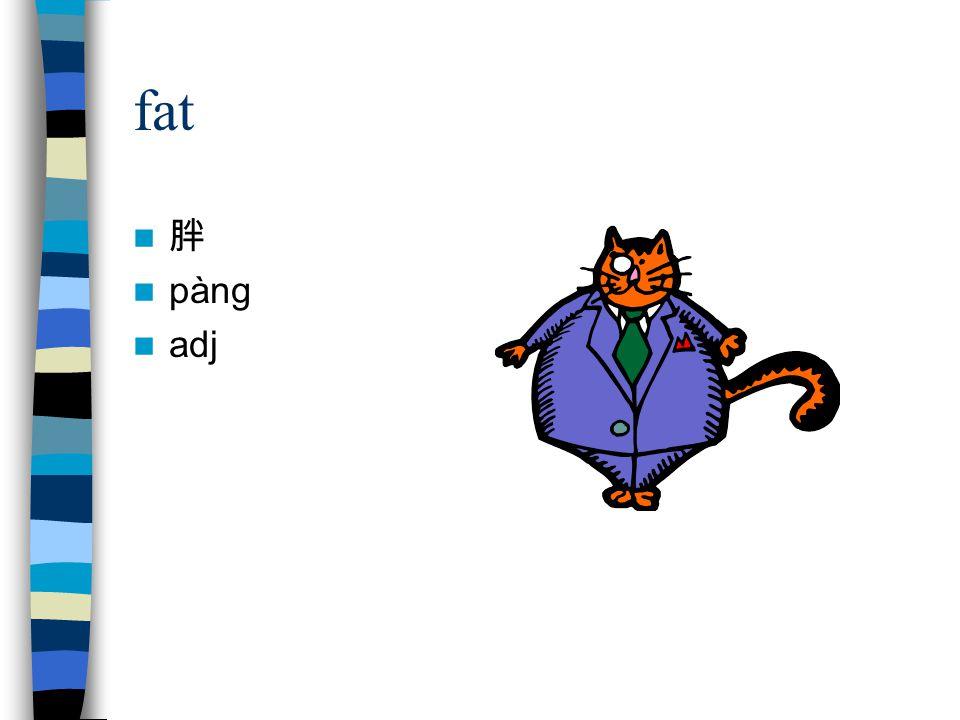 fat 胖 pàng adj