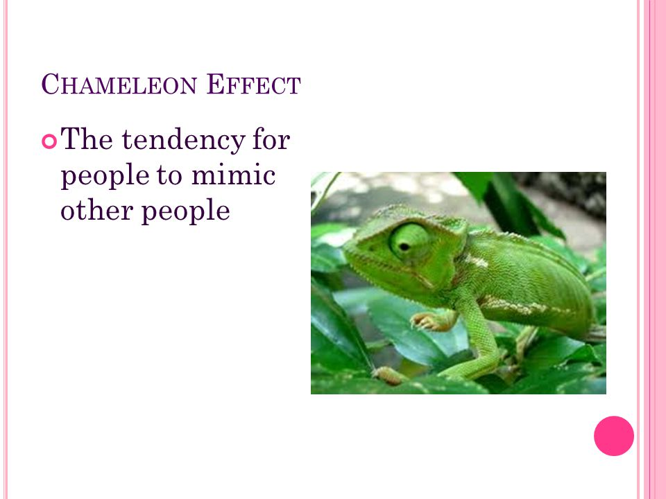 C HAMELEON E FFECT The tendency for people to mimic other people
