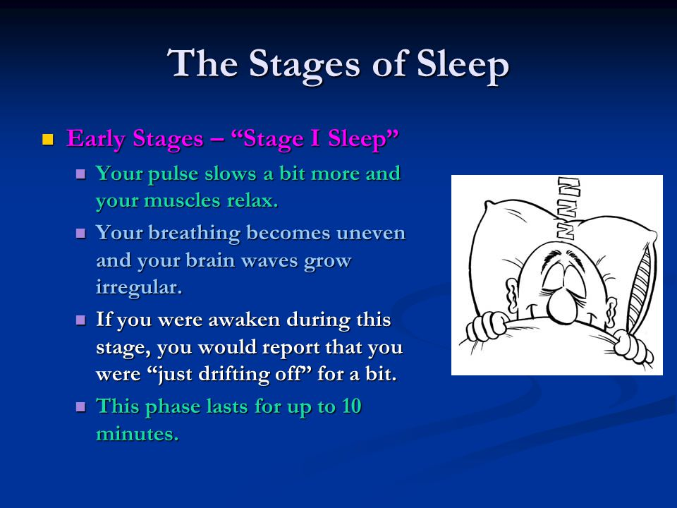 """The Stages of Sleep Early Stages – """"Stage I Sleep"""" Early Stages – """"Stage I Sleep"""" Your pulse slows a bit more and your muscles relax. Your pulse slows"""