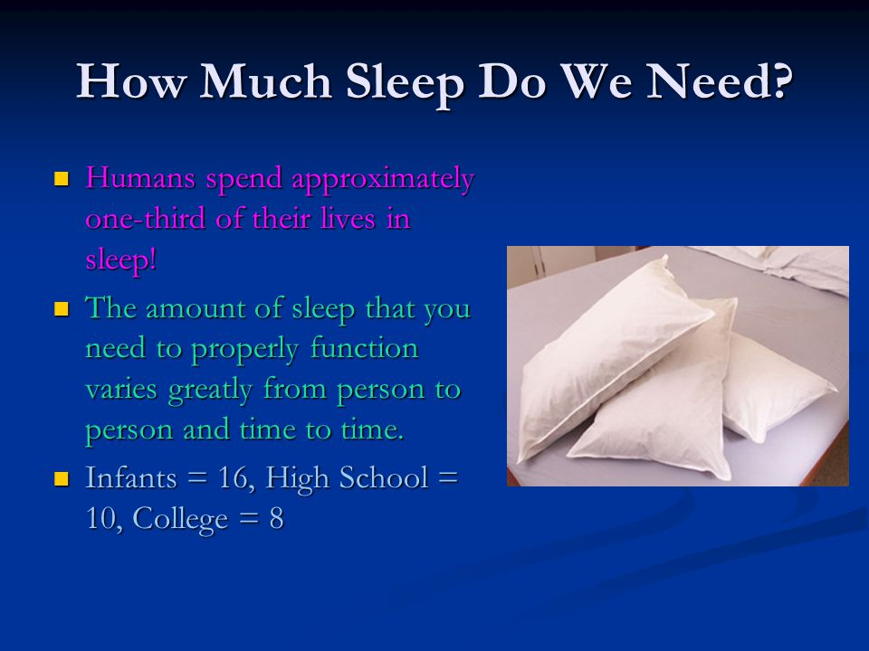 How Much Sleep Do We Need? Humans spend approximately one-third of their lives in sleep! Humans spend approximately one-third of their lives in sleep!