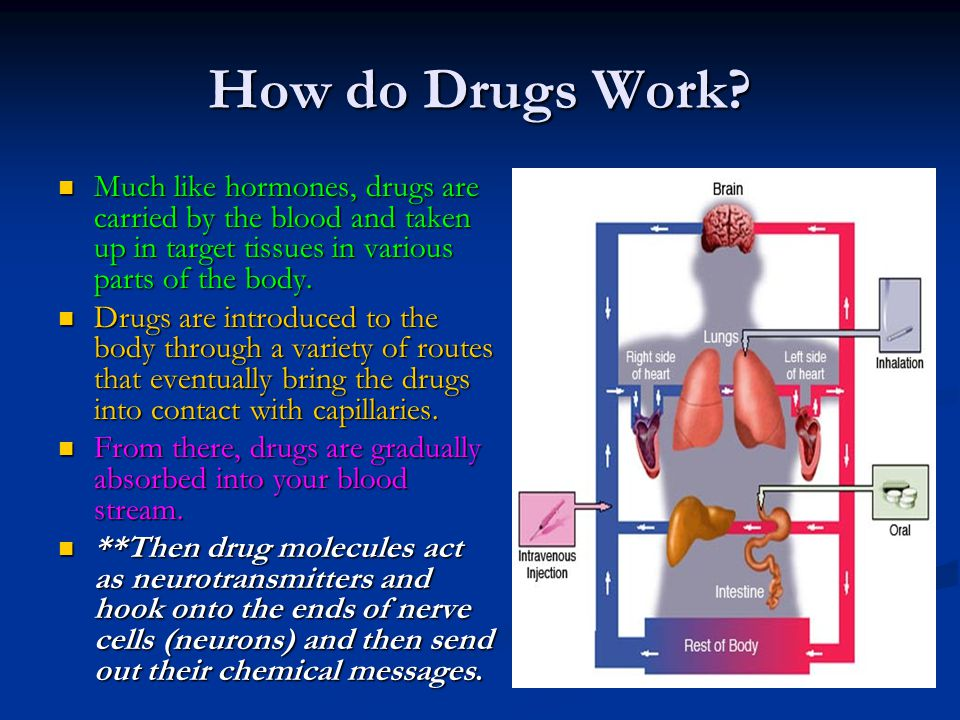 How do Drugs Work? Much like hormones, drugs are carried by the blood and taken up in target tissues in various parts of the body. Much like hormones,