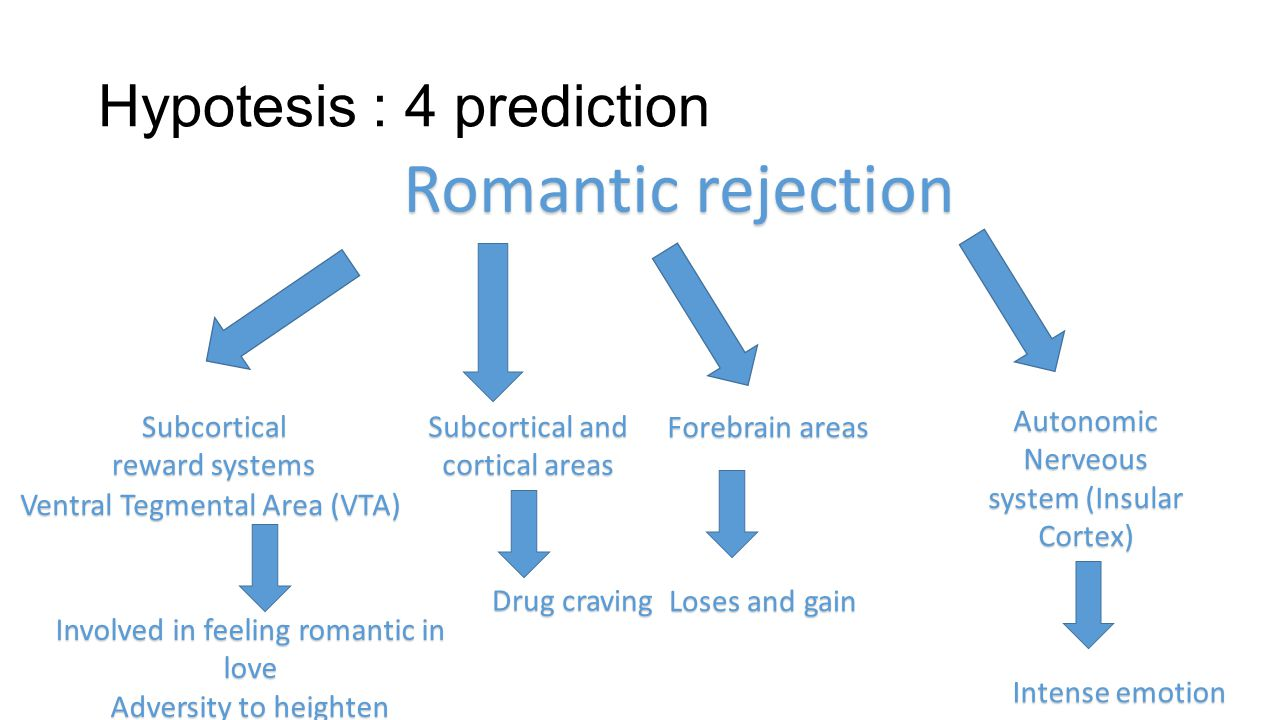 Hypotesis : 4 prediction Romantic rejection Subcortical reward systems Ventral Tegmental Area (VTA) Involved in feeling romantic in love Adversity to heighten Subcortical and cortical areas Drug craving Forebrain areas Loses and gain Autonomic Nerveous system (Insular Cortex) Intense emotion