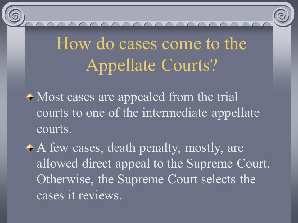 How do cases come to the Appellate Courts.