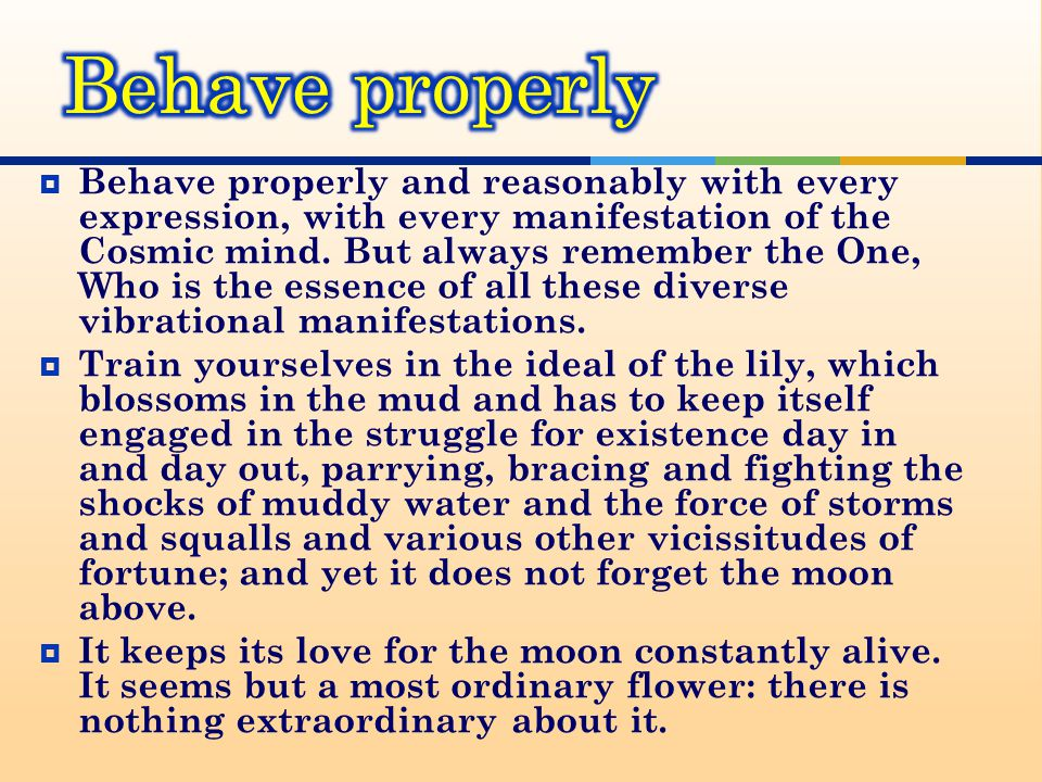  Behave properly and reasonably with every expression, with every manifestation of the Cosmic mind.
