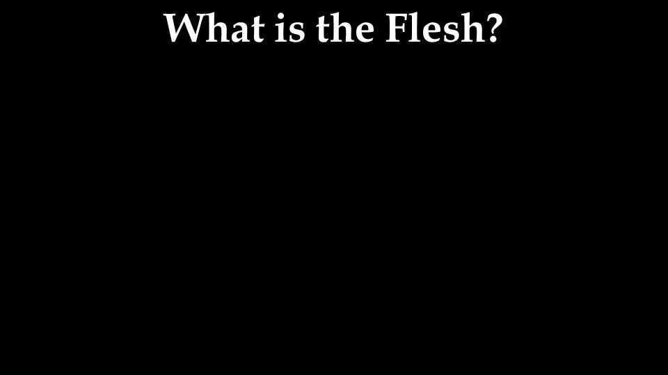 What is the Flesh