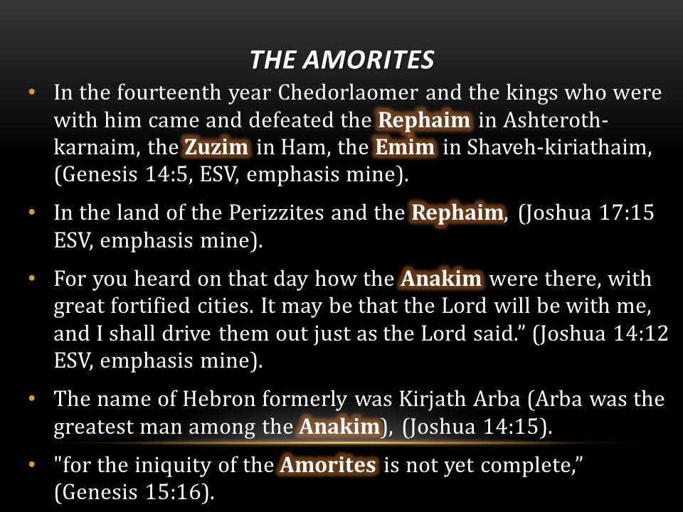 THE AMORITES