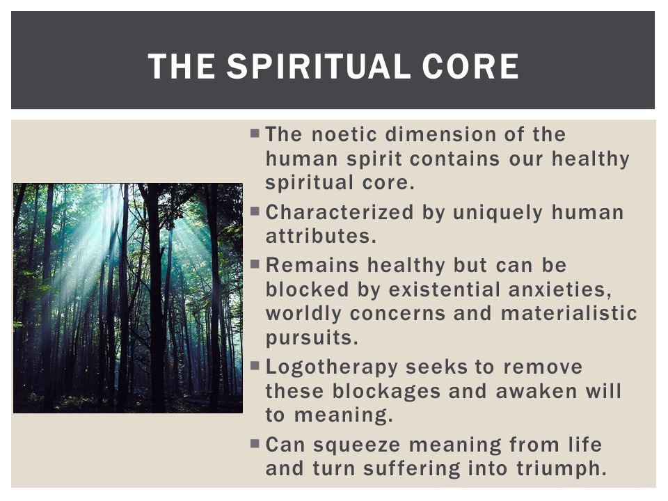  The noetic dimension of the human spirit contains our healthy spiritual core.  Characterized by uniquely human attributes.  Remains healthy but ca