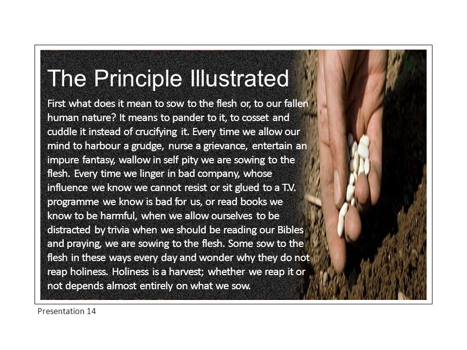 The Principle Illustrated First what does it mean to sow to the flesh or, to our fallen human nature.