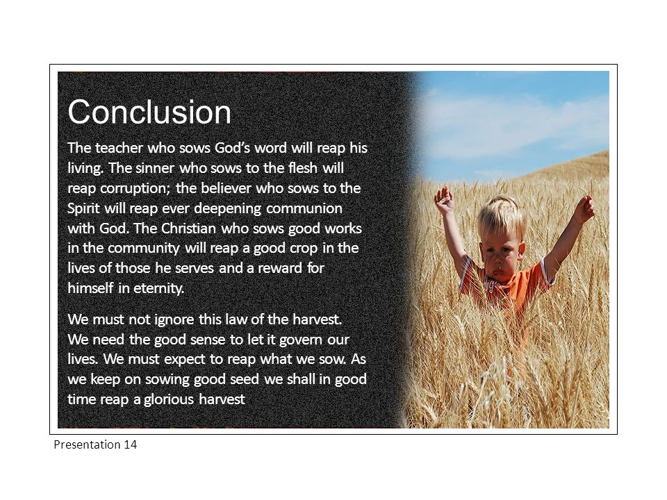 Conclusion The teacher who sows God's word will reap his living.