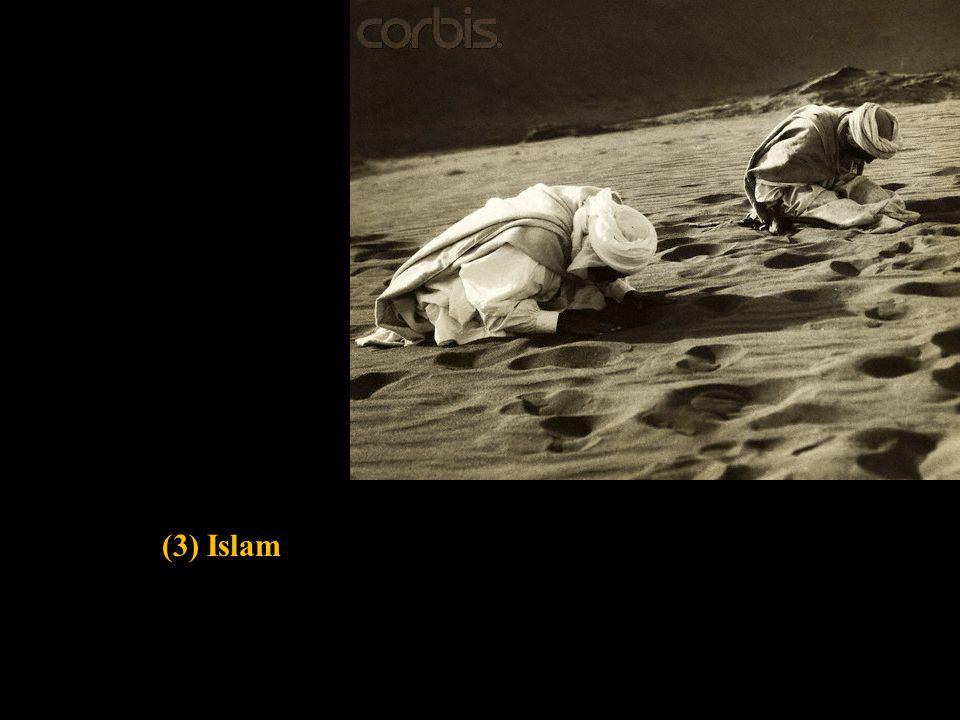 (3) Islam