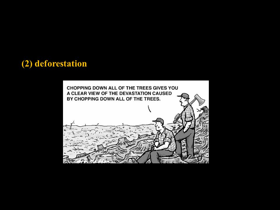 (2) deforestation