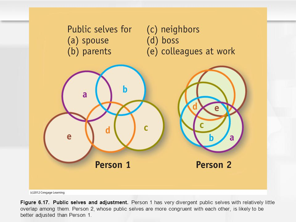 Figure 6.17. Public selves and adjustment. Person 1 has very divergent public selves with relatively little overlap among them. Person 2, whose public