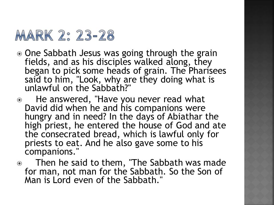  One Sabbath Jesus was going through the grain fields, and as his disciples walked along, they began to pick some heads of grain.