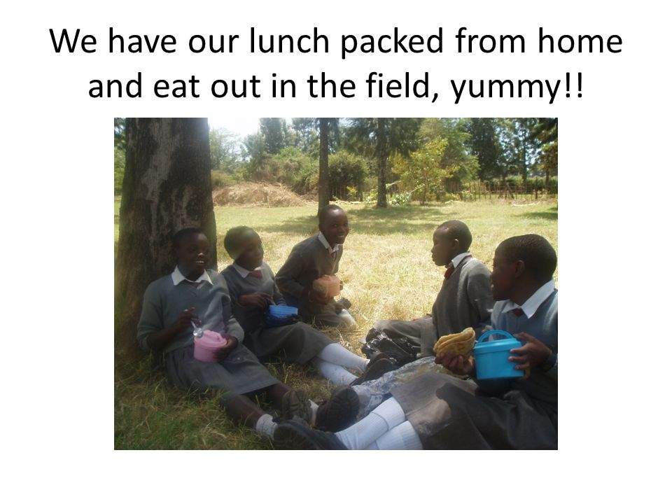 We have our lunch packed from home and eat out in the field, yummy!!