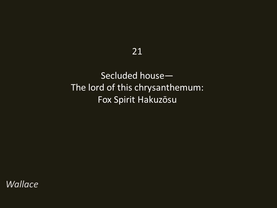 21 Secluded house— The lord of this chrysanthemum: Fox Spirit Hakuzōsu Wallace