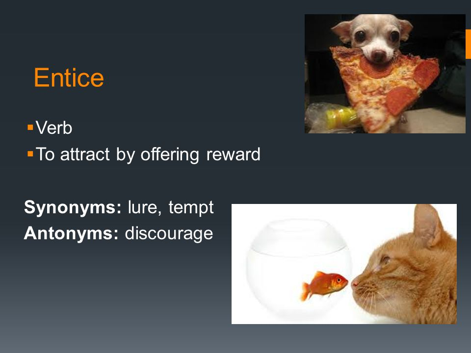 Entice  Verb  To attract by offering reward Synonyms: lure, tempt Antonyms: discourage