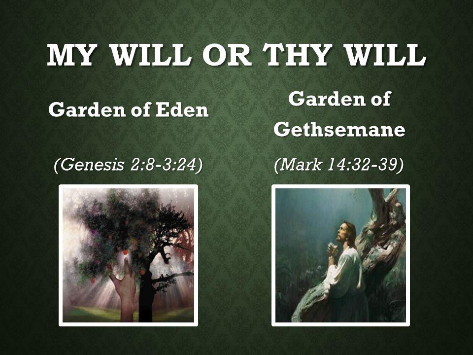 MY WILL OR THY WILL Garden of Eden (Genesis 2:8-3:24) Garden of Gethsemane (Mark 14:32-39)