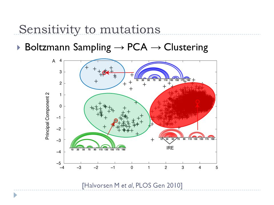Sensitivity to mutations [Halvorsen M et al, PLOS Gen 2010]  Boltzmann Sampling → PCA → Clustering