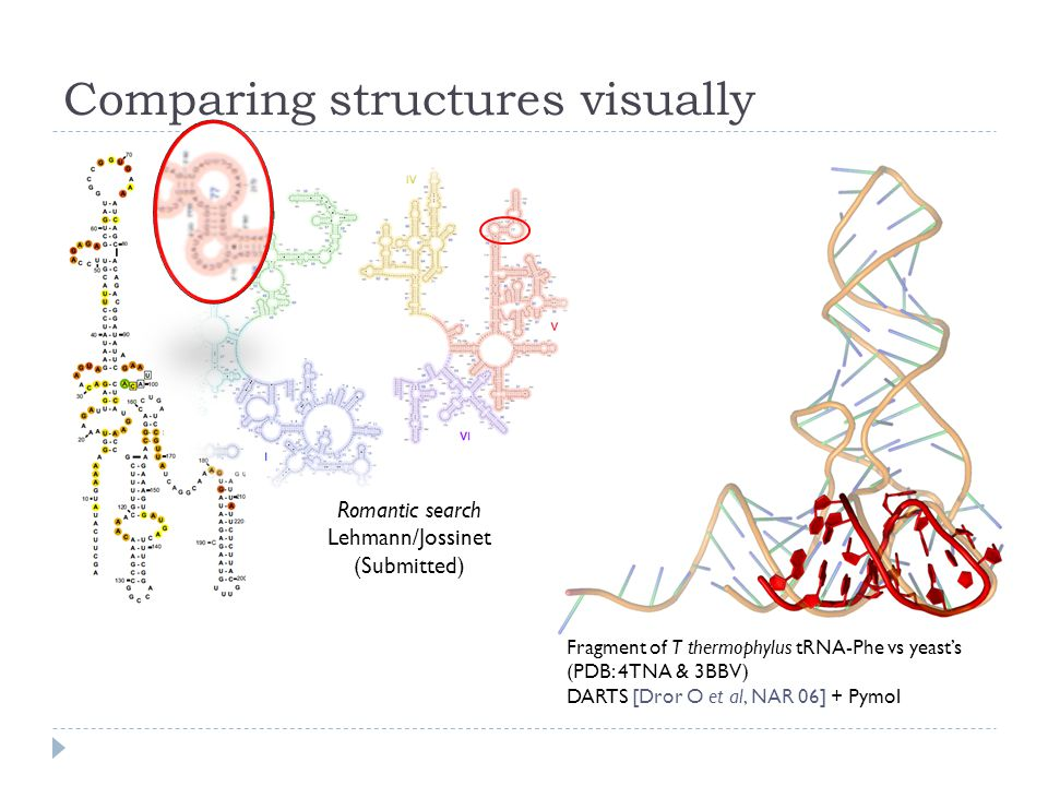 Comparing structures visually Fragment of T thermophylus tRNA-Phe vs yeast's (PDB: 4TNA & 3BBV) DARTS [Dror O et al, NAR 06] + Pymol Romantic search Lehmann/Jossinet (Submitted)