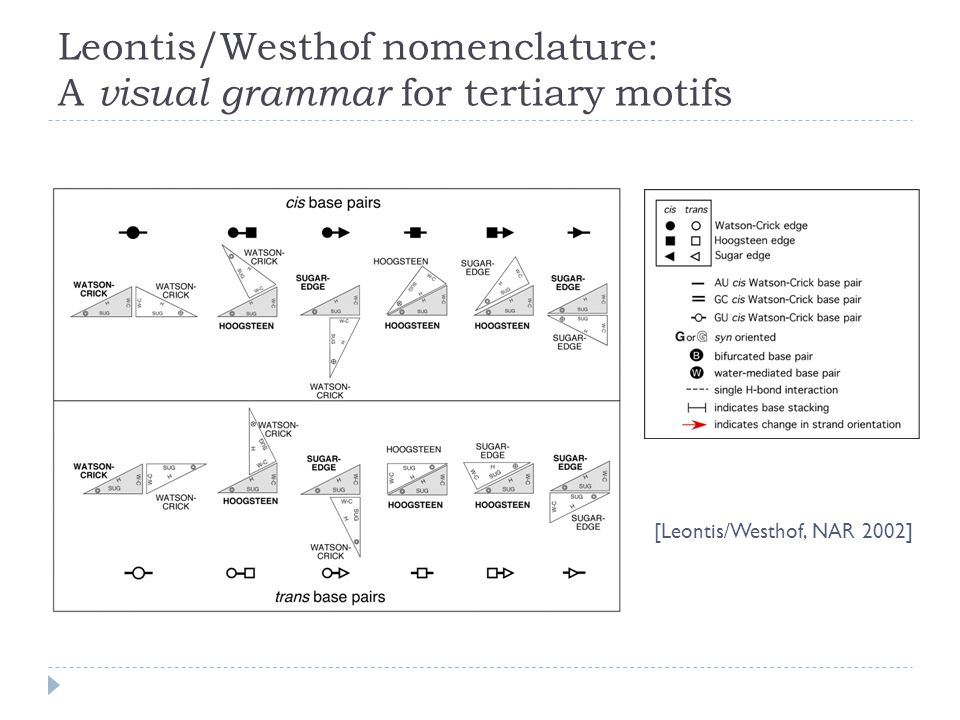 [Leontis/Westhof, NAR 2002] Leontis/Westhof nomenclature: A visual grammar for tertiary motifs