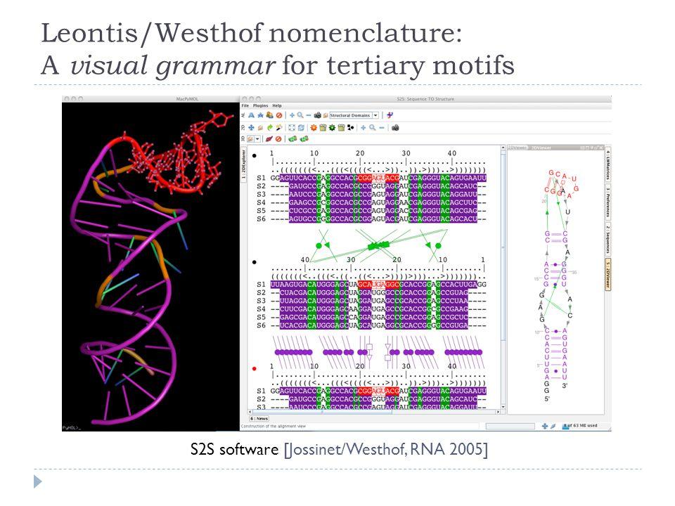 S2S software [Jossinet/Westhof, RNA 2005]