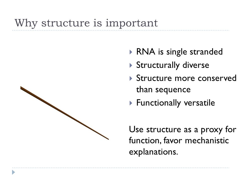 Three levels of RNA structure