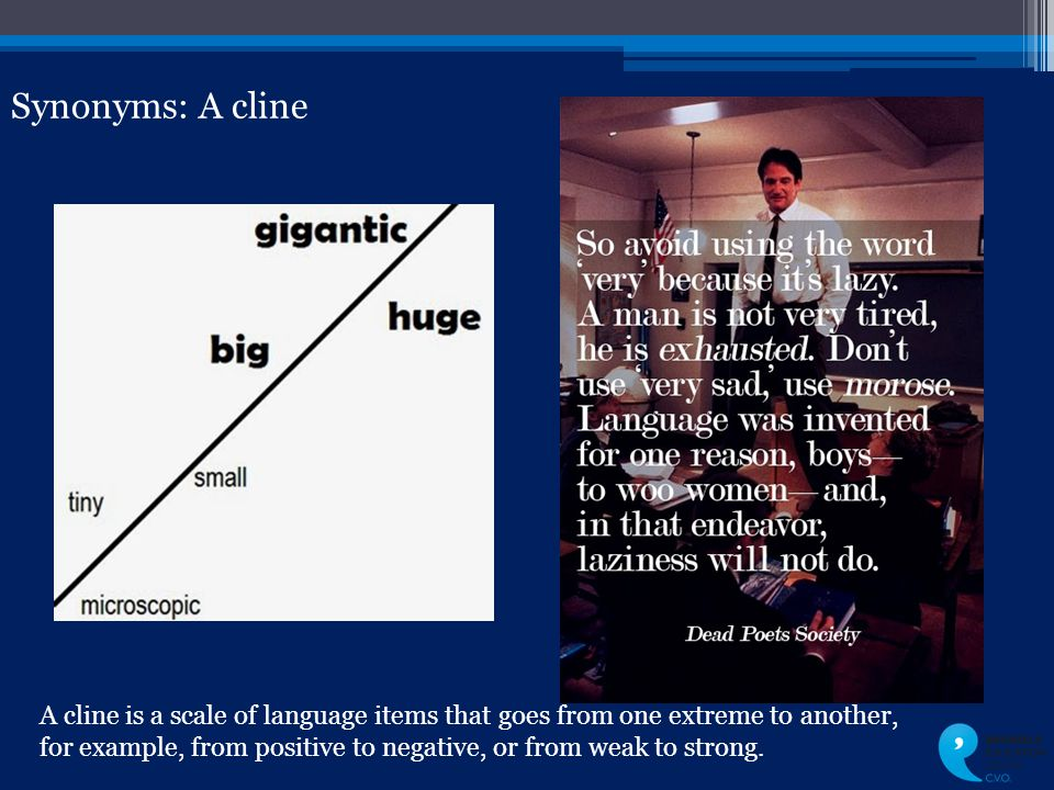 Synonyms: A cline A cline is a scale of language items that goes from one extreme to another, for example, from positive to negative, or from weak to strong.